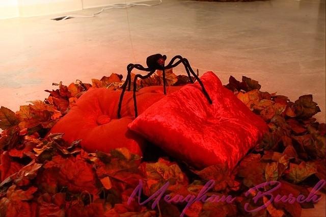 Nest Spider